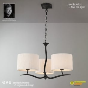 Eve 3 Light Anthracite Ceiling Fitting