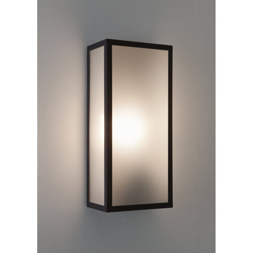 Wall Light Glass Diffuser : Astro Lighting Messina Single Light Outdoor Wall Fitting With Frosted Glass Diffuser - Astro ...