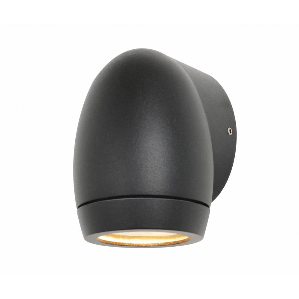 Forum Lighting Isis Single Light External Downward Facing Wall Fitting in Anthracite Grey ...