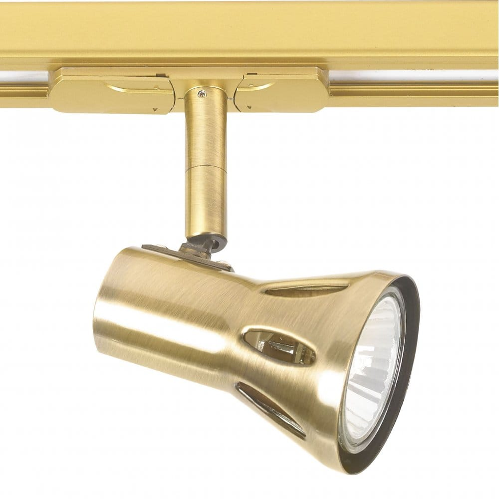 Vintage Brass Track Lighting: Endon Lighting Enluce Single Light Spotlight Head In
