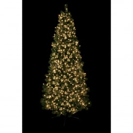 1500 Traditional Golden Glow LED Treebrights with Multi Action Facility