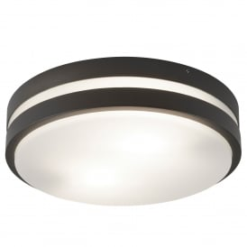 2 Light Flush Outdoor Ceiling/ Wall Fitting In Dark Grey Finish With Opal Diffuser