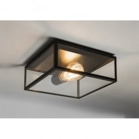 1353001 Bronte Single Light Exterior Porch Ceiling Light In Black Finish With Clear Glass Panels