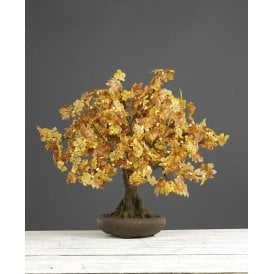 005BON700A Bonsai 70cm Autumn Tree with 175 LEDs