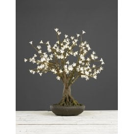 005BON700CWW Clear Blossom 70cm Bonsai Tree with 175 Warm White LEDs