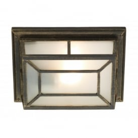 Trent Single Light External Wall and Ceiling Fixture in a Black Gold Finish