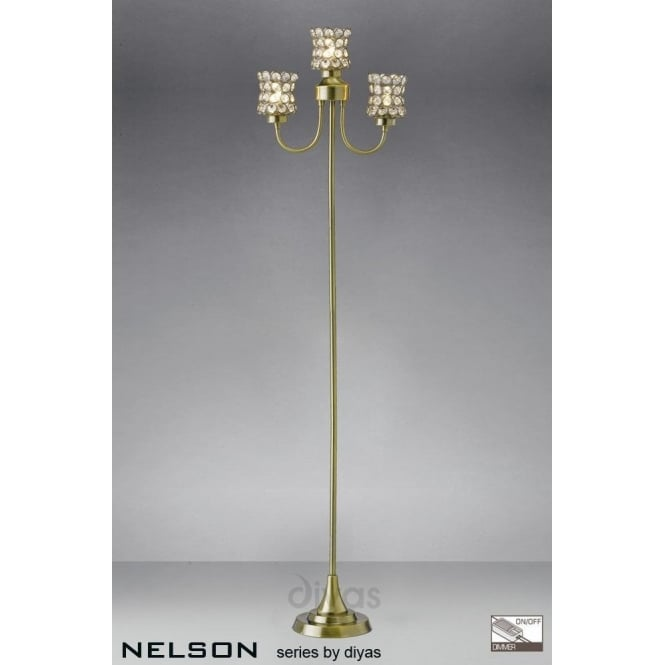 Diyas nelson 3 light floor lamp in antique brass with crystal shades nelson 3 light floor lamp in antique brass with crystal shades aloadofball Image collections