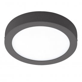 Argolis LED Outdoor Wall Or Ceiling Fitting In Anthracite Finish