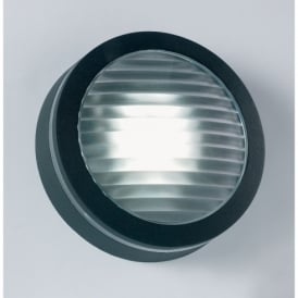 Enluce Single Light Low Energy Exterior Fitting In Black Finish