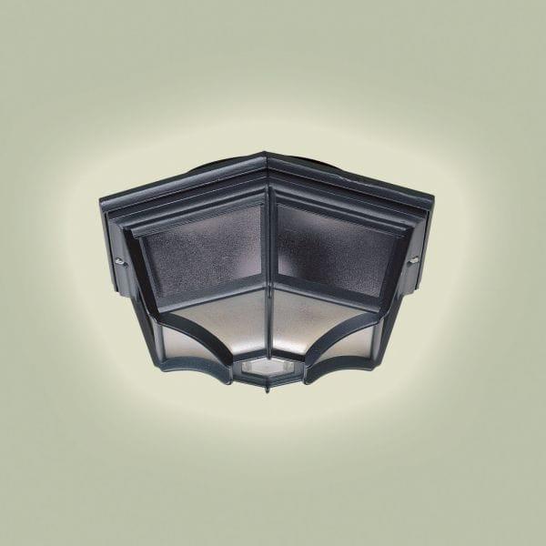 Endon lighting enluce single light outdoor flush wall or ceiling enluce single light outdoor flush wall or ceiling porch light in black finish mozeypictures Images