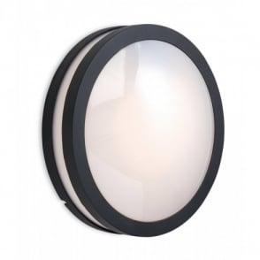 8354GP Zenith Circular Outdoor Wall Light In Graphite Finish