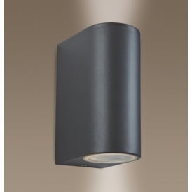 Scenic 2 Light Wall Lamp in a Gun Metal Finish (Outdoor)