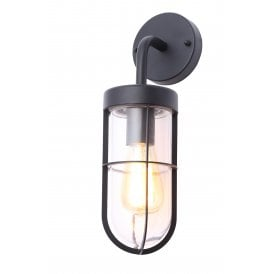 Woking Single Light Outdoor Wall Fitting In Black Finish With Clear Glass Shade