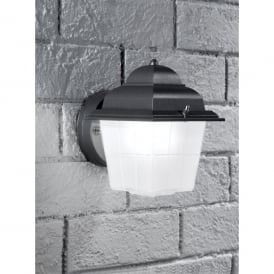 Giardino Single Light Outdoor Wall Fitting In Dark Grey Finish With Satin Glass Shade