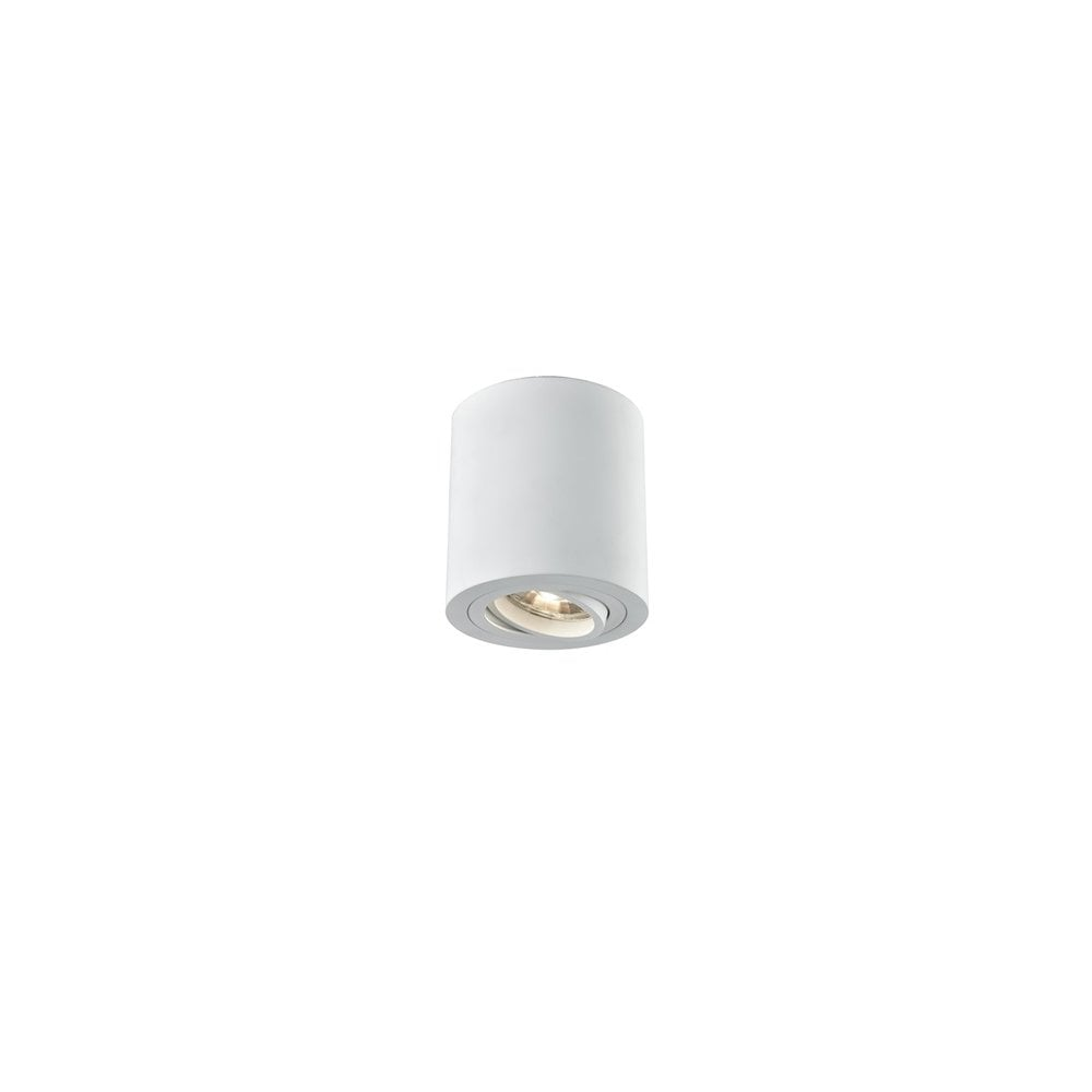 Single light led surface mounted directional down light in white finish