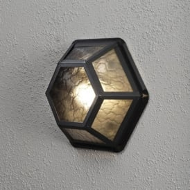 Castor Single Light Outdoor Wall or Ceiling Fitting in Black Finish