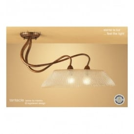 M39004 Tentacle 2 Light Ceiling Fitting In Antique Bronze Finish