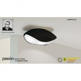 Pasion 4 Light Ceiling Fitting in Black Finish