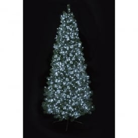 Premier Decorations 1000 Bright White LED Tree Timebrights with Multi-Action Facility
