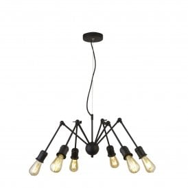 Mantis 6 Light Ceiling Fitting in Black Finish