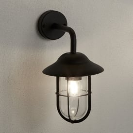 Toronto Single Light Outdoor Wall Fitting In Black Finish With Clear Glass Shade