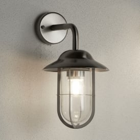 Toronto Single Light Outdoor Wall Fitting In Stainless Steel Finish With Clear Glass Shade